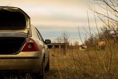 Auto op een gebied Stock Foto's