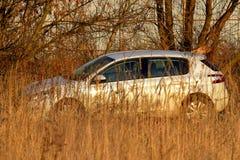 Auto op het gebied van gras Stock Foto