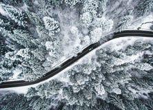 Auto op weg in de wintertrog een bos met sneeuw wordt behandeld die Royalty-vrije Stock Afbeelding