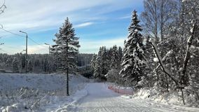 Auto road near forest with ski track in winter Royalty Free Stock Photography