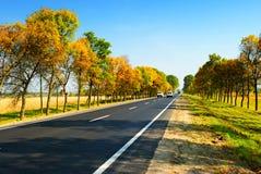 Auto's op weg tussen de herfstbomen Stock Foto's