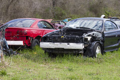 Auto Salvage Yard 1994-1998 Mustangs. A pair of 1994-1994 Ford Mustang parts cars in a salvage yard Royalty Free Stock Photo