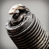 Auto service. Old spark plug as spare part of car. Stock Images