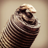 Auto Service. Old Spark Plug As Spare Part Of Car. Stock Photos