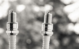 Auto service. Two new spark plugs as spare part of car. Royalty Free Stock Image