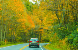 Auto tour of fall foliage royalty free stock photography