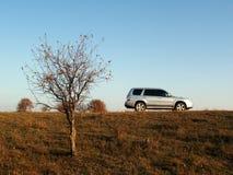 Auto u. Bäume auf Überlandleitung Stockfotos
