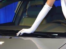 Auto und Baumuster Lizenzfreies Stockbild