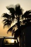 Auto unter der Palme bei Sonnenuntergang auf dem Strand Lizenzfreies Stockbild
