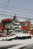 Auto unter Schnee in Brooklyn, NY nach enormem Winter-Sturm Juno schlägt nordöstlich Stockfotos