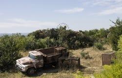 Auto voor vervoer van leeuwen crimea Royalty-vrije Stock Fotografie