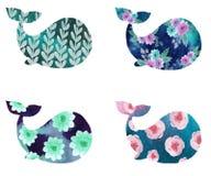 Autoadesivi con le balene illustrazione di stock
