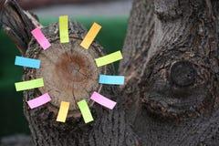 Autoadesivi di carta del troncone dell'albero forestale nessuno fotografie stock