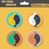 Autoadesivi stabiliti di Yin Yang Whales Fotografie Stock