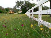 Autobús escolar en el camino rural de Tejas fotografía de archivo libre de regalías