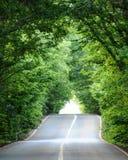 Autobahn mit Wald Stockbild