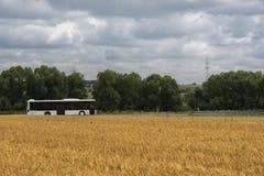 Autobus conduisant près des champs de blé Photo stock