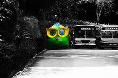 Autobus de hibou au lac Taïwan moon de Sun Photographie stock libre de droits
