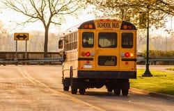 Autobus scolaires Images libres de droits