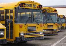 Autobus scolaires Image libre de droits