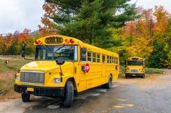 Autobus scolaires Photos libres de droits