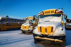 Autobus scolaires d'hiver Photographie stock libre de droits