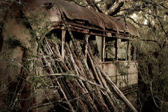 Autobus w drewnach Obraz Royalty Free