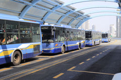 Autobuses brillantes imagen de archivo