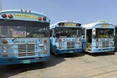 Autobuses del pasajero en la ciudad de Belice Fotos de archivo