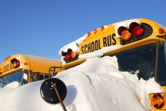 Autobuses escolares 1 del invierno Imagen de archivo libre de regalías
