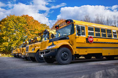 Autobuses escolares amarillos Fotografía de archivo libre de regalías