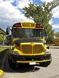 autobusowy szkolny kolor żółty Obraz Stock