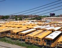 autobusy Obraz Stock