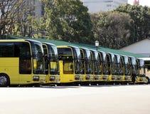 autobusy Zdjęcia Stock