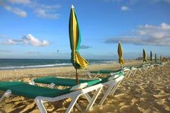 autocars de plage Image libre de droits