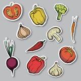 Autocollants avec des croquis des légumes Photos stock