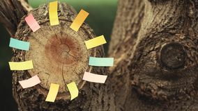 Autocollants de papier de souche d'arbre forestier personne longueur de hd banque de vidéos