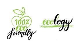 Autocollants sains végétariens de nourriture, 100 écologiques, nourriture propre d'écologie illustration de vecteur
