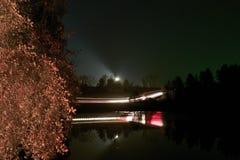 Autofahren auf einer Nachtstraße im Wald Stockfotografie