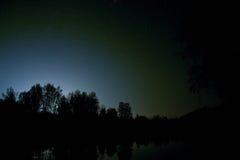 Autofahren auf einer Nachtstraße im Wald Stockfotos