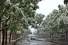 Autofahren auf Straße während des Schneesturms Lizenzfreie Stockbilder