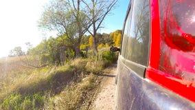 Autofahren durch die Landschaft im tiefen Wald stock footage
