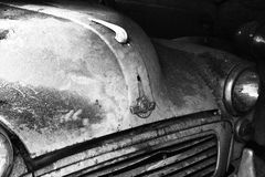 Autofront Lizenzfreie Stockfotografie