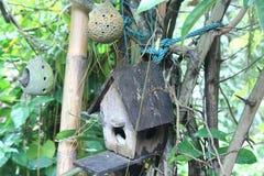Autoguidez (nid) dans le jardin Images stock
