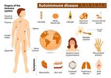 Autoimmune disease infographic Royalty Free Stock Image