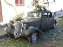 Automóvel velho com a planta do wilde em Colonia de Sacramento Imagem de Stock