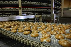 Automated conveyor line or belt machine in bakery or confectionery food factory, cookies and cakes production manufactory stock photo