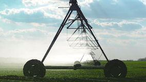 Automated Farming Irrigation Sprinklers System in Operation on Cultivated Agricultural Field stock footage