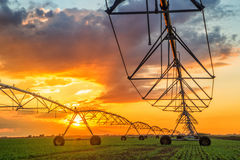 Automated farming irrigation system in sunset Royalty Free Stock Photo