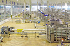automated production line in modern dairy factory Royalty Free Stock Photography